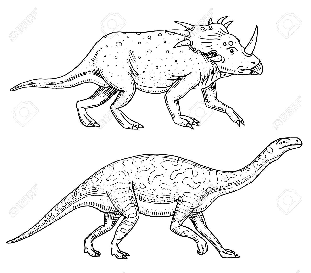 恐竜トリケラトプス、バロサウルス、アパトサウルス、テノントサウルス ...