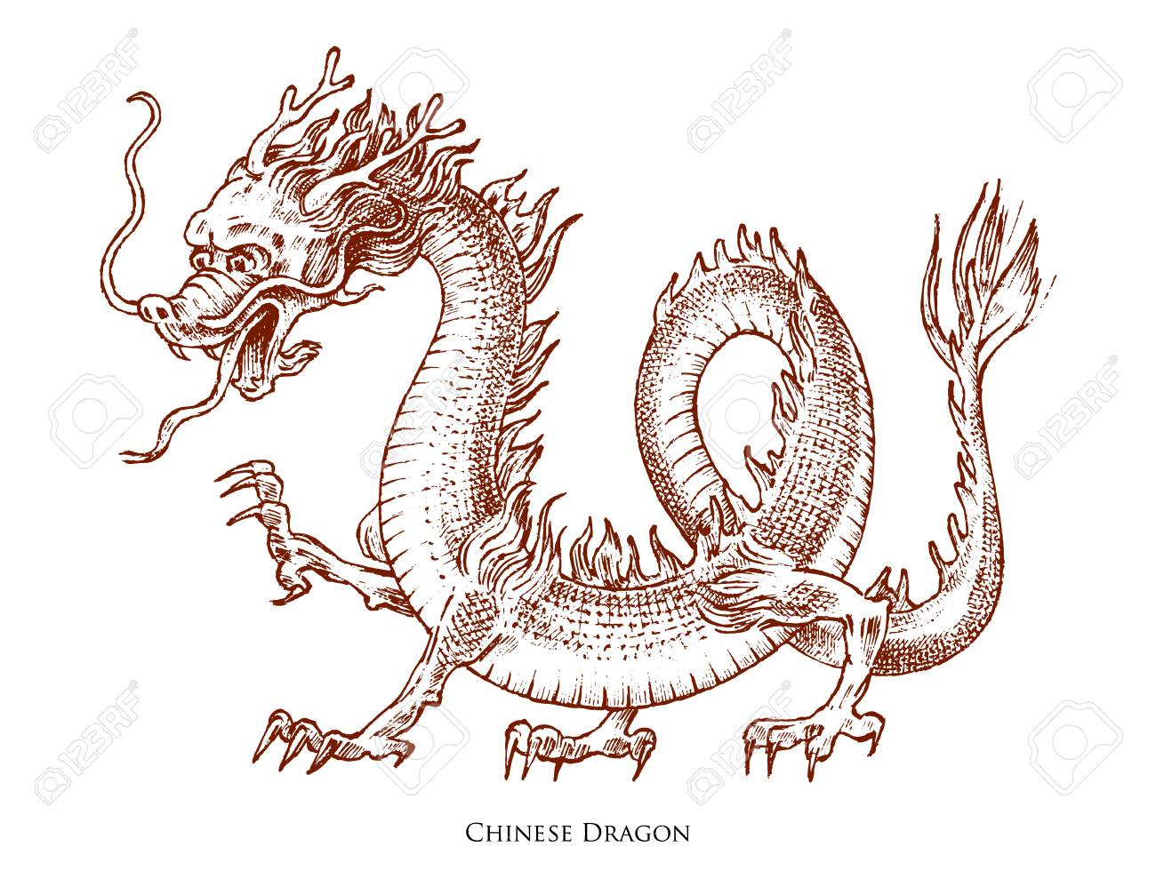 Chinese Dragon Mythological Animal Or Asian Traditional Reptile Royalty Free Cliparts Vectors And Stock Illustration Image 109049001