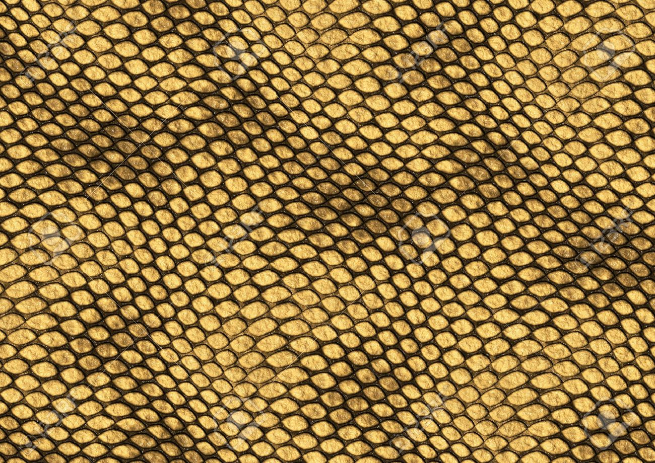 Animal skin scales