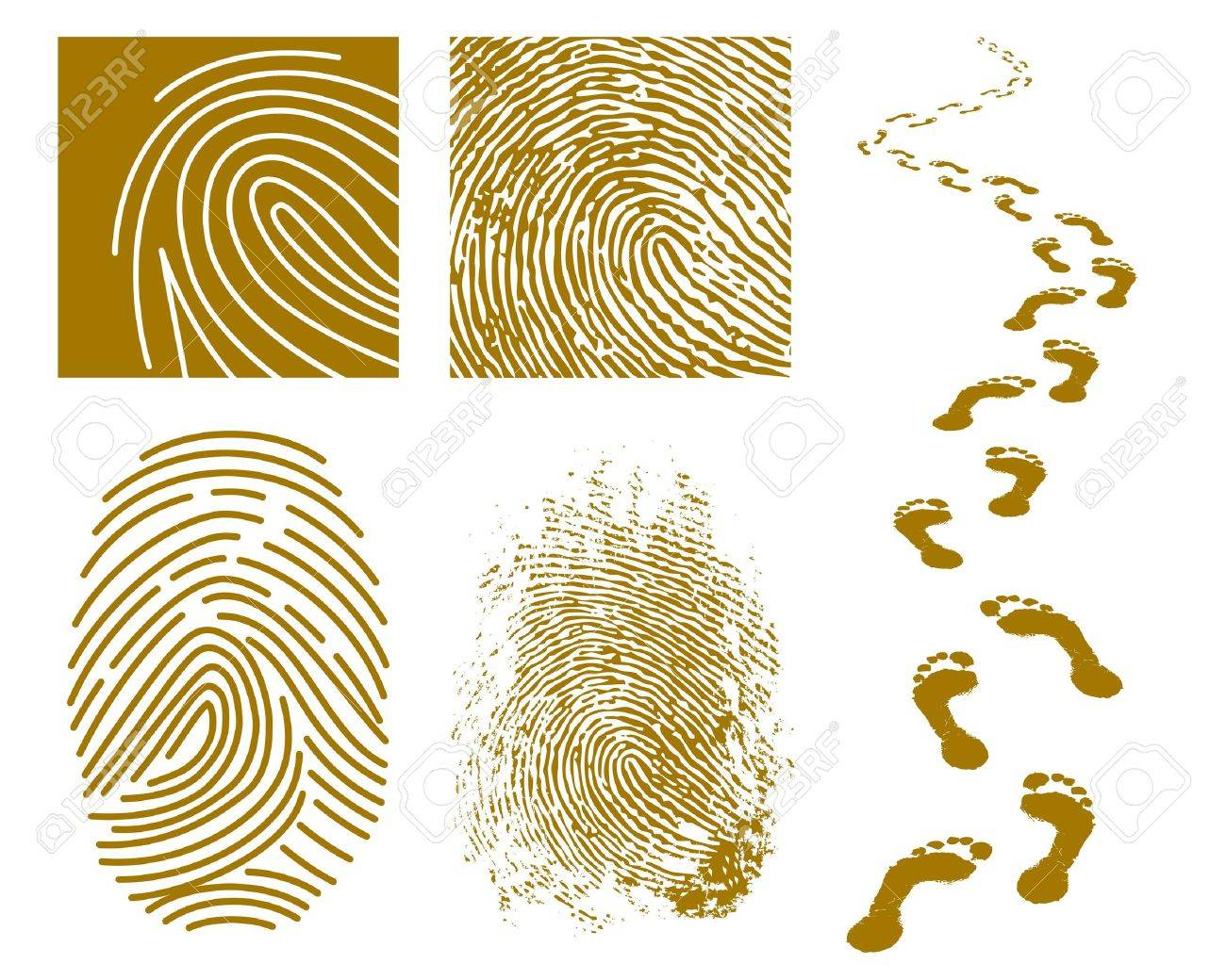 illustration of fingerprints and footprints on a white background Stock Vector - 7699045