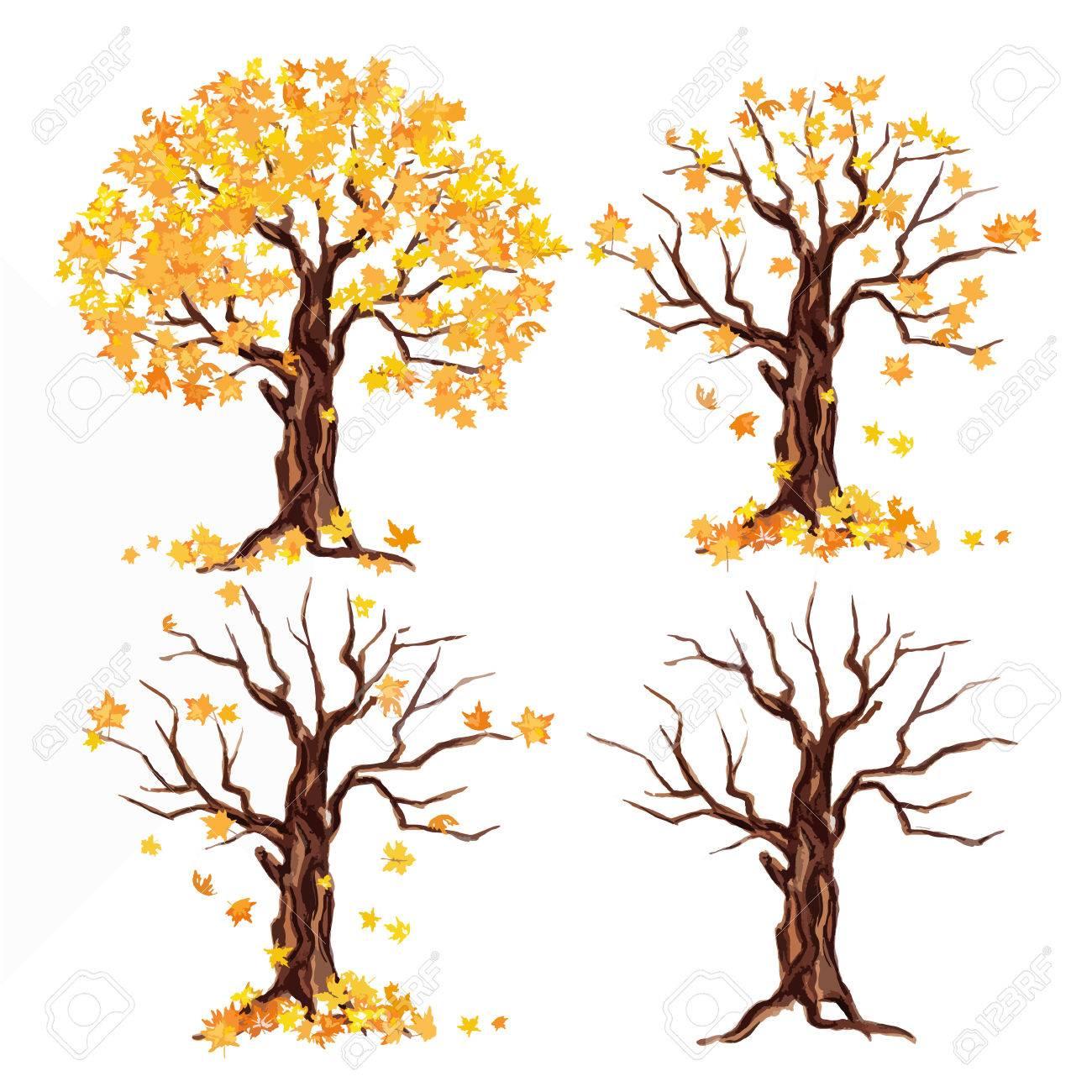 Weatercolor Herbst Baum Auf Weissem Hintergrund Gelbe Und Orange