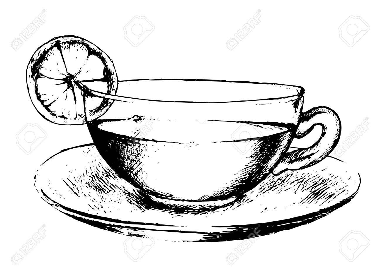 Hand Gezeichnet Tasse Tee Auf Weißem Hintergrund Schwarze Und Weiße