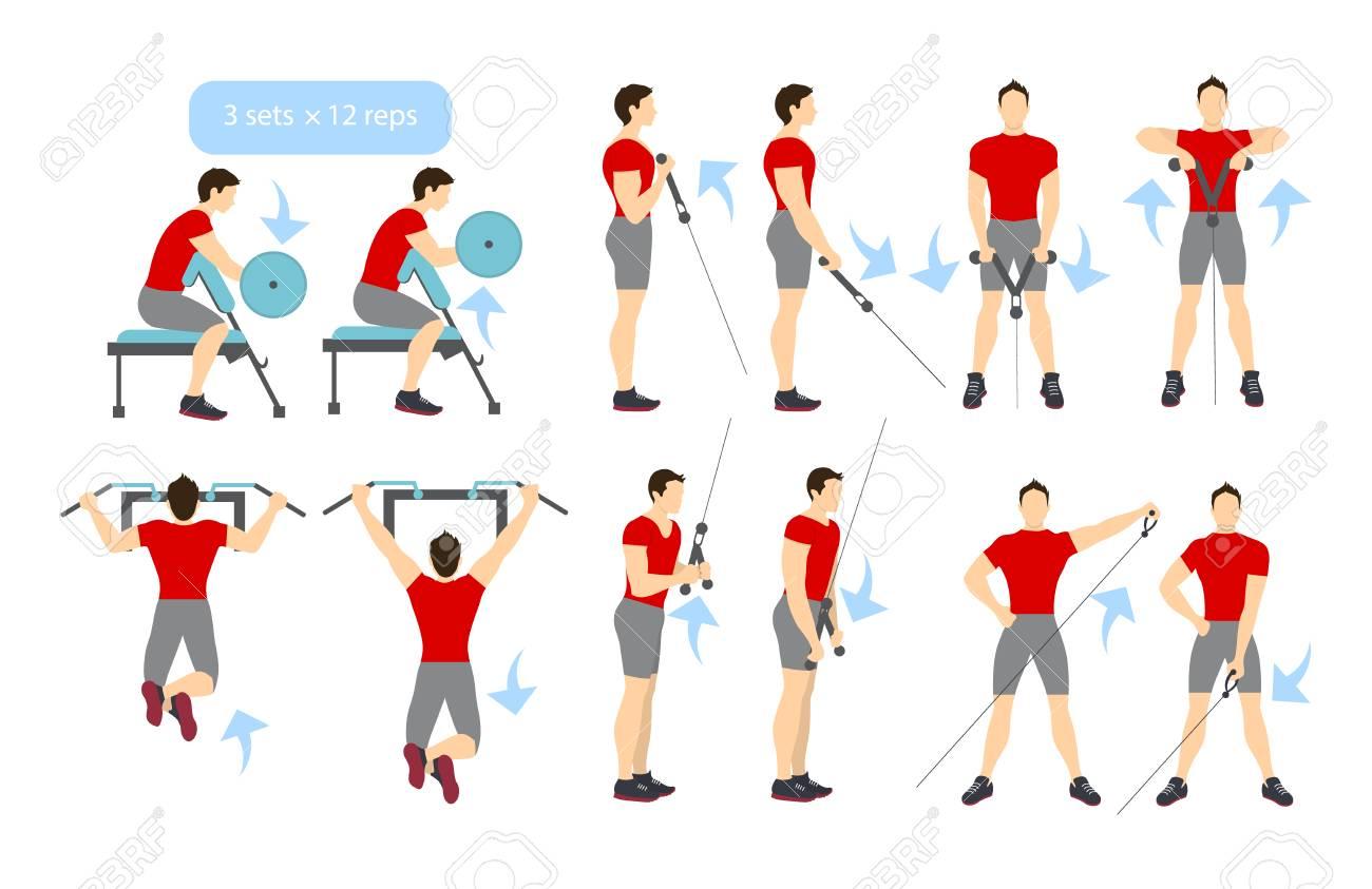 Armtraining Auf Weißem Hintergrund. Übungen Für Männer. Trizeps ...