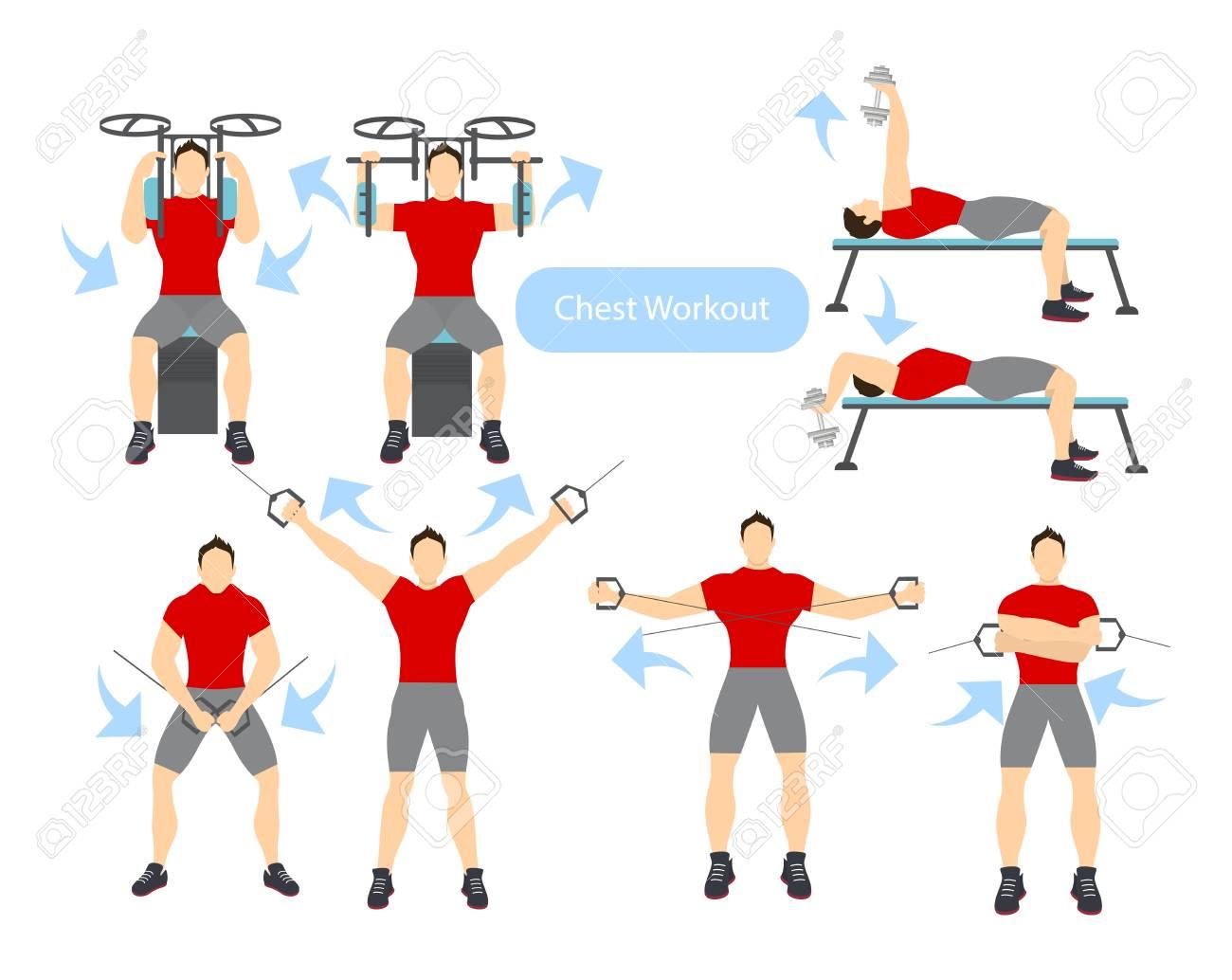 Chest Workout Set On White Background Exercises For Men Hard Training Stock Vector