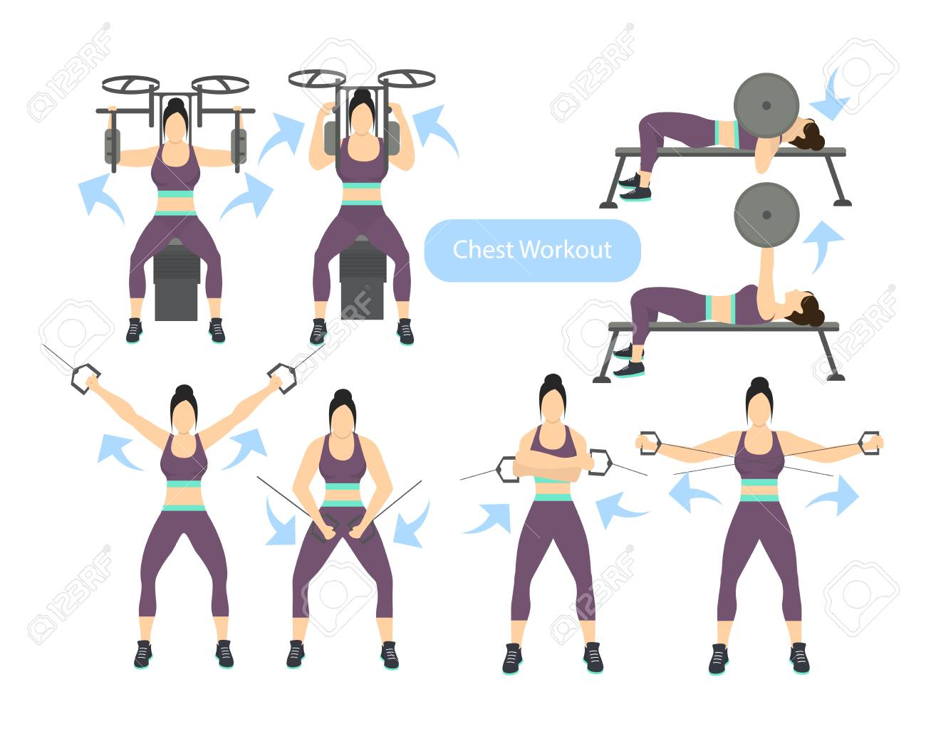 Chest Workout Set On White Background. Exercises For Women. Hard ...
