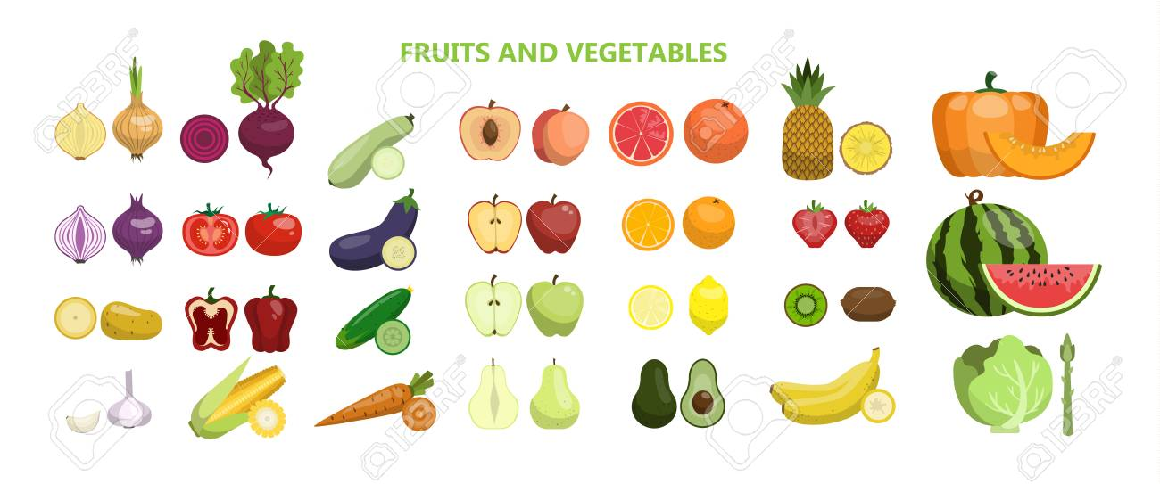 Fruits and vegetables illustration. - 95841474