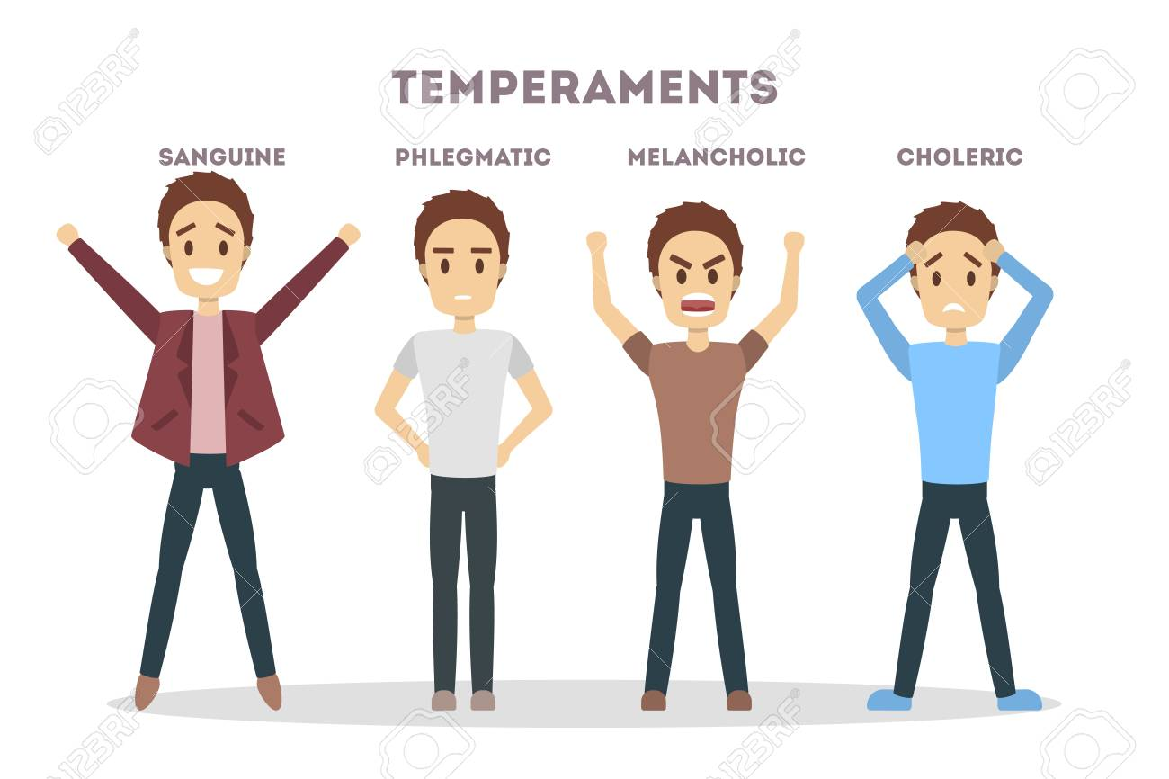 Is a person who phlegmatic Phlegmatic Temperament