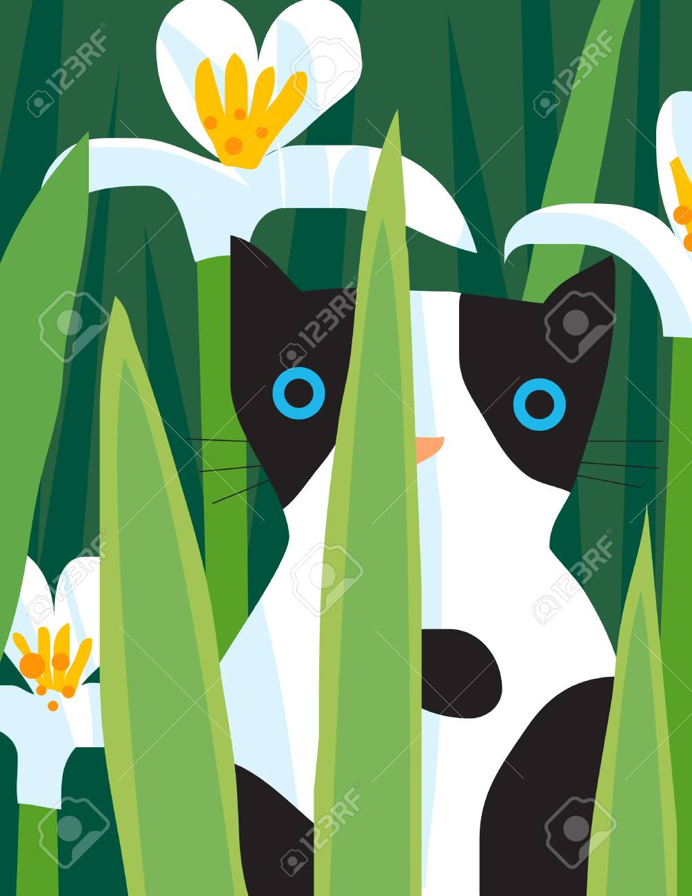 A black and white cat is looking through the plants Stock Photo - 16898697