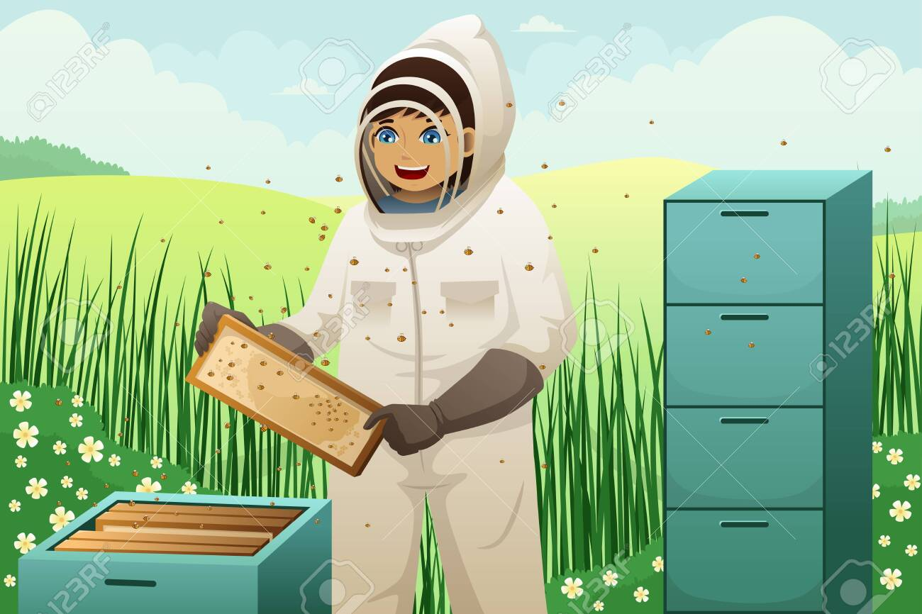 illustration of beekeeper takes honeycomb frame out of beehive Stock Vector - 26497131