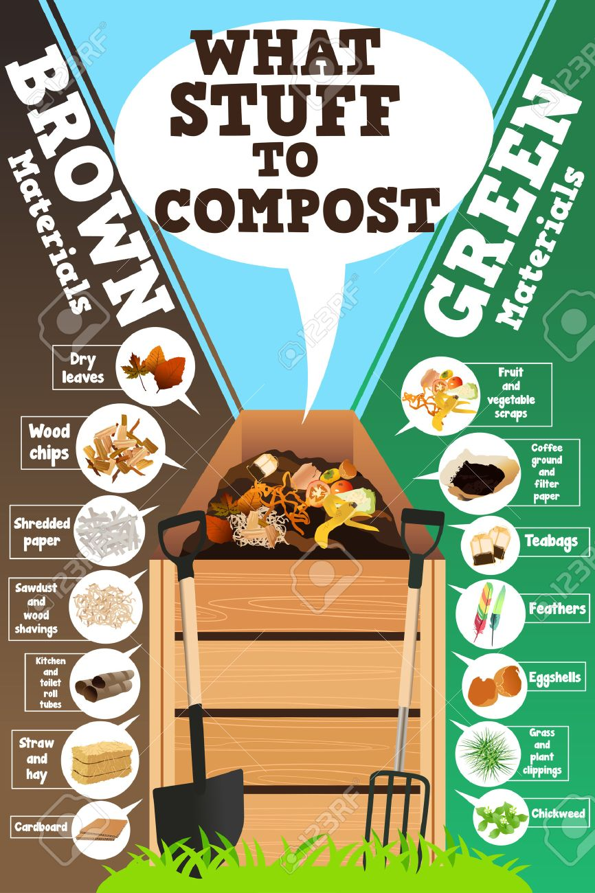 A vector illustration of what stuff to compost infographic - 57188111
