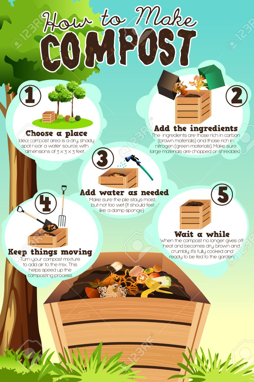 A vector illustration of how to make compost infographic - 57261639