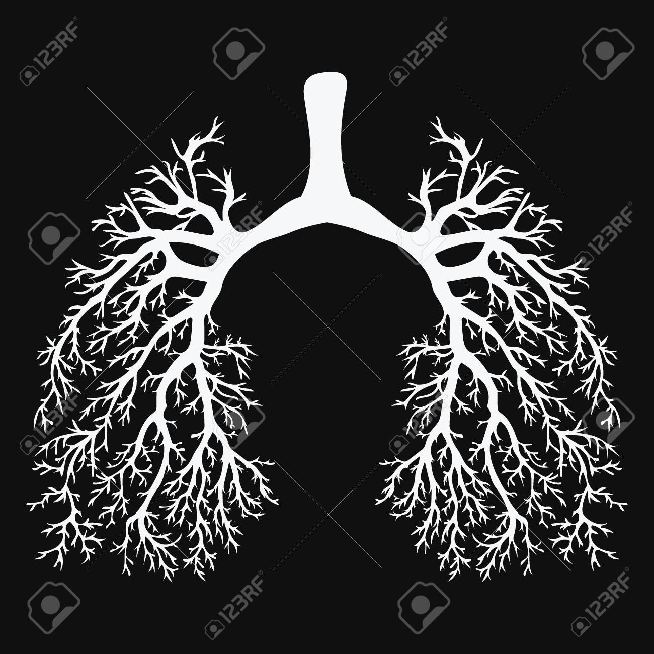 Human lungs. Respiratory system. Healthy lungs. Light in the form of a tree. Black and white drawing on a chalkboard. Medicine. - 90812733