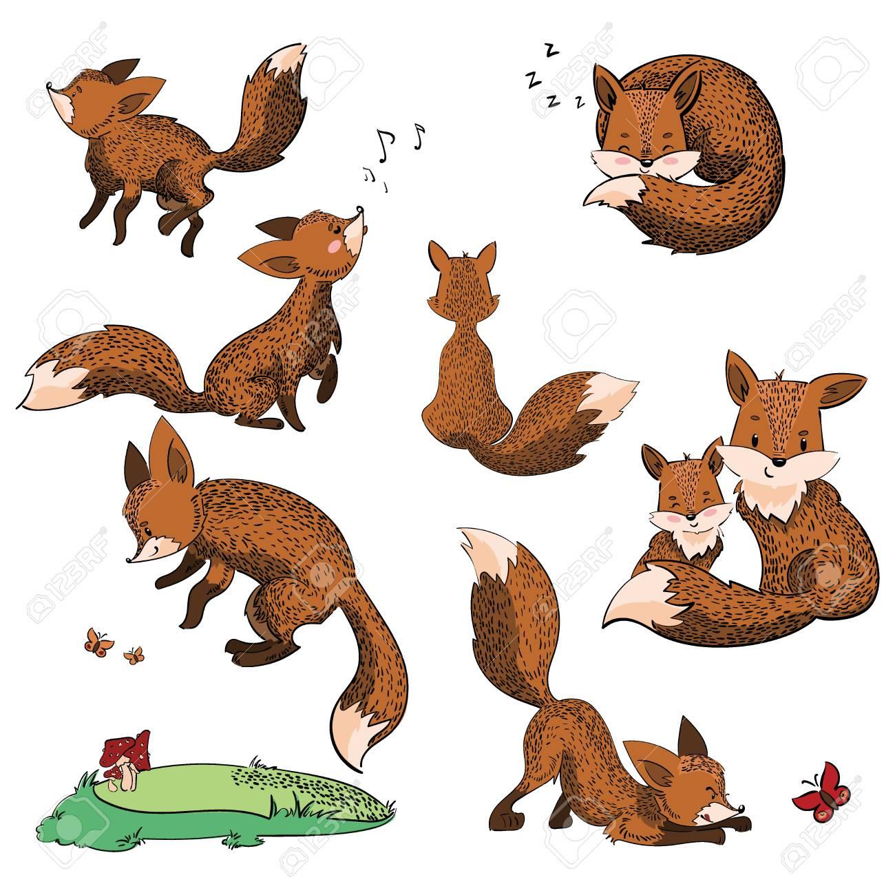 Conjunto De Dibujos Animados Zorros Colección De Zorros Lindos Ilustración Vectorial Para Niños Animales Salvajes