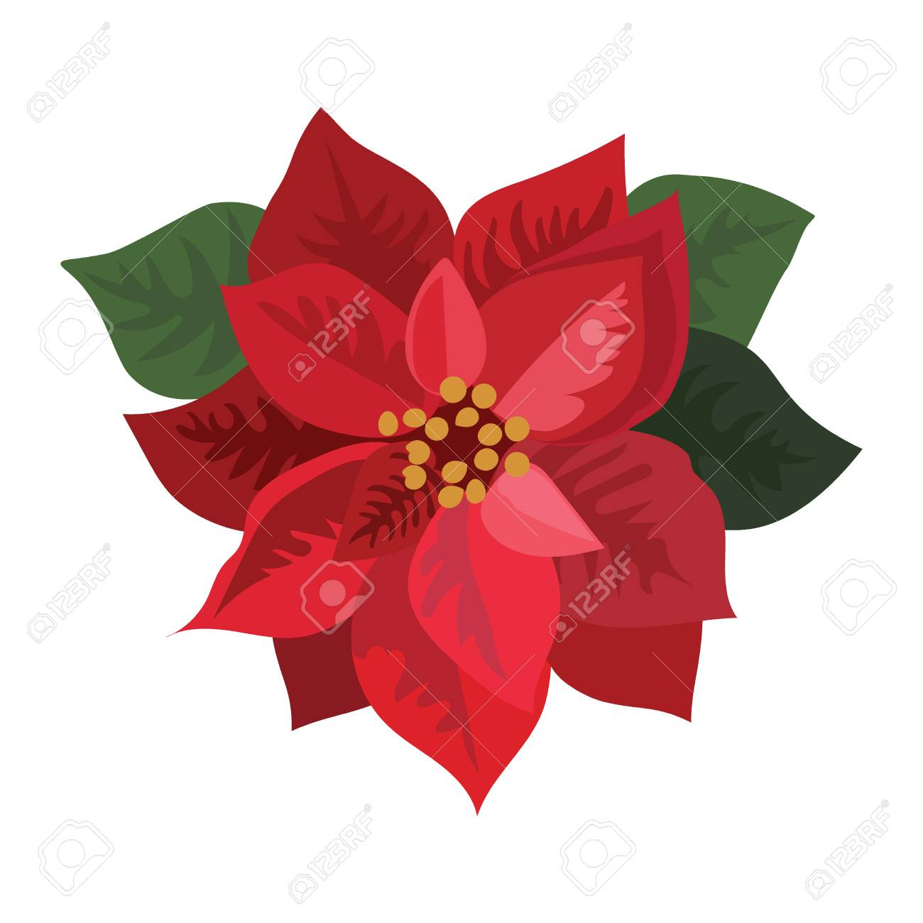 Red Christmas Flower.Flower Poinsettia Cartoon Christmas Flower Vector Illustration