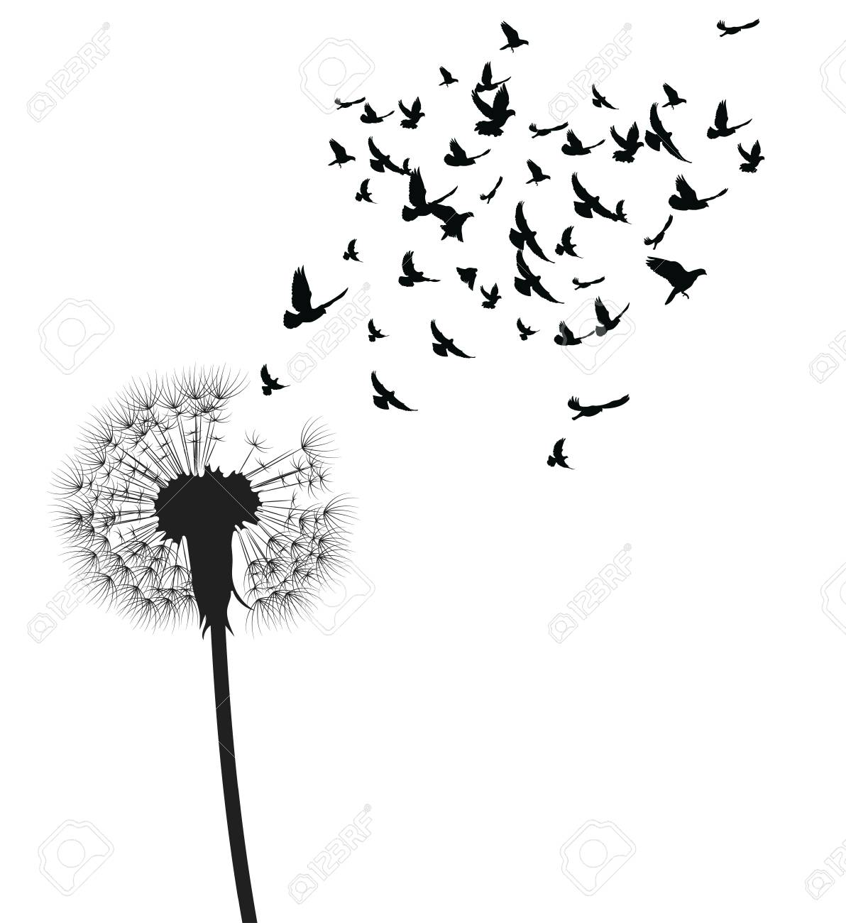 Silhouette Of A Dandelion With Flying Seeds Black Contour Of