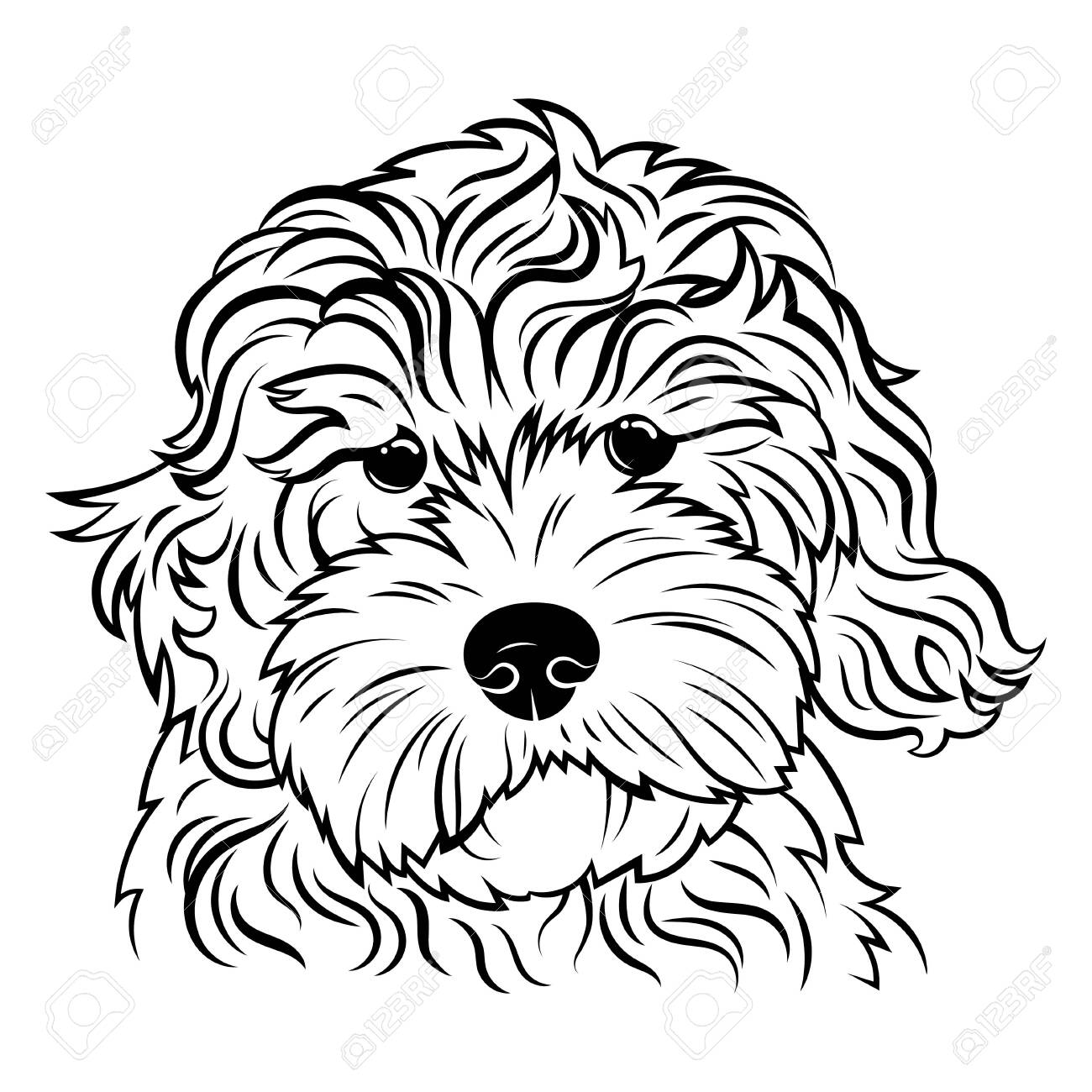 Portrait Of A Dog Portrait Of The Breed Golden Doodle Black Royalty Free Cliparts Vectors And Stock Illustration Image 129542907