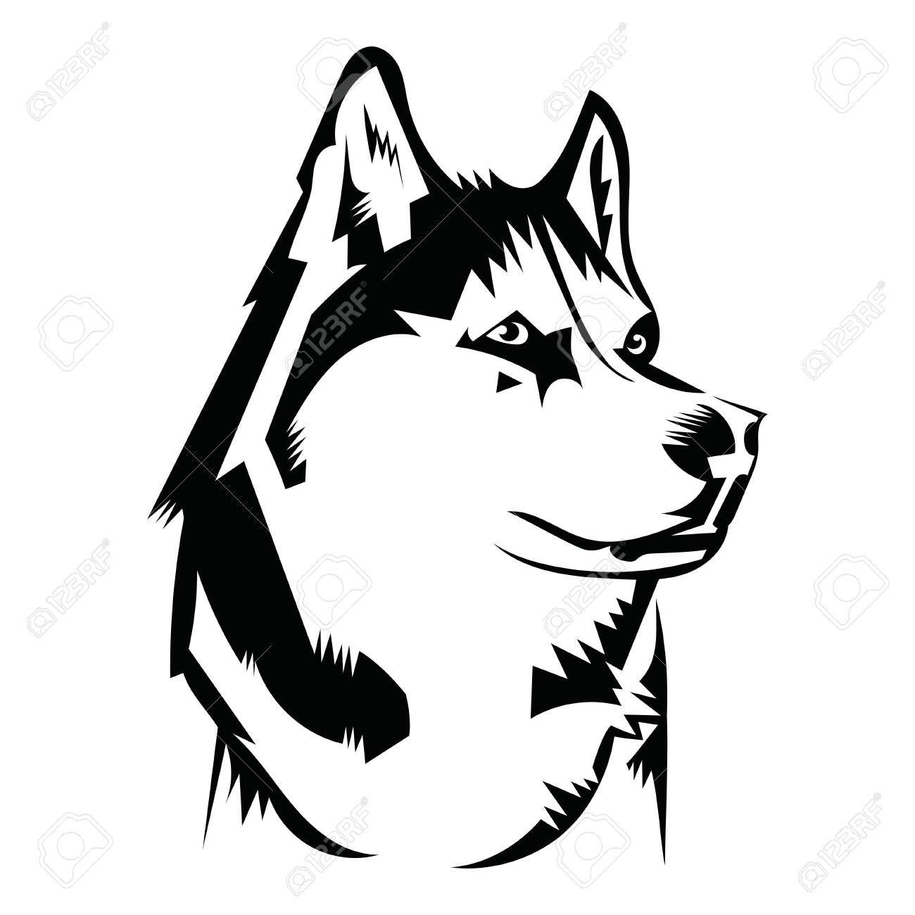 Portrait of a husky. Black and white dog head. Illustration of a pet. Tattoo. - 130020465