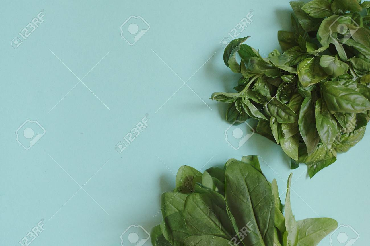 Green fresh basil and spinach on the blue background - 104224097