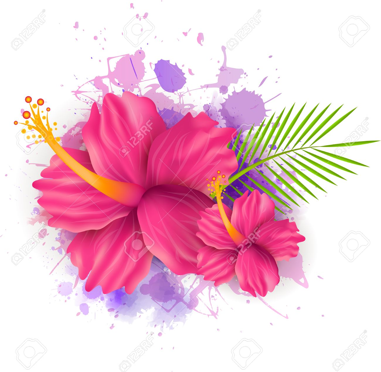 Abstract summer background with hibiscus flowers on colorful abstract summer background with hibiscus flowers on colorful watercolor splash stock vector 30028964 izmirmasajfo