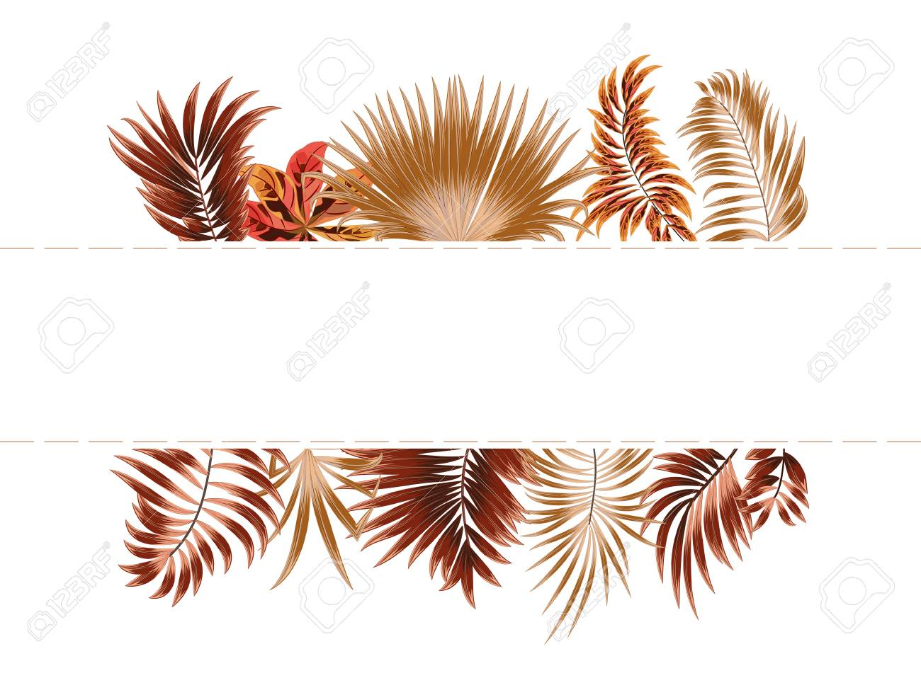 Vector tropical jungle frame with palm trees and leaves on white..