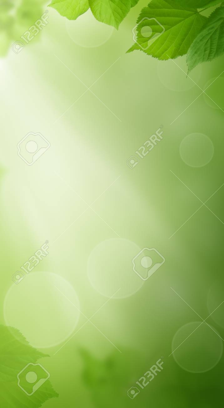 Green Background With Spring Leaves And Sunlight Phone Wallpaper