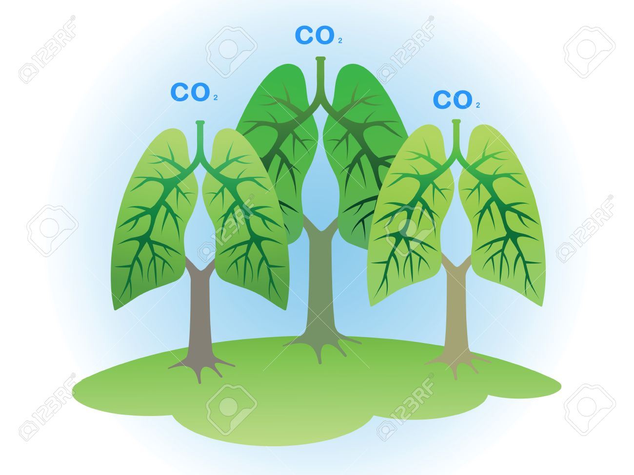 Concept: Trees - the lungs of the planet. Stock Vector - 7844042