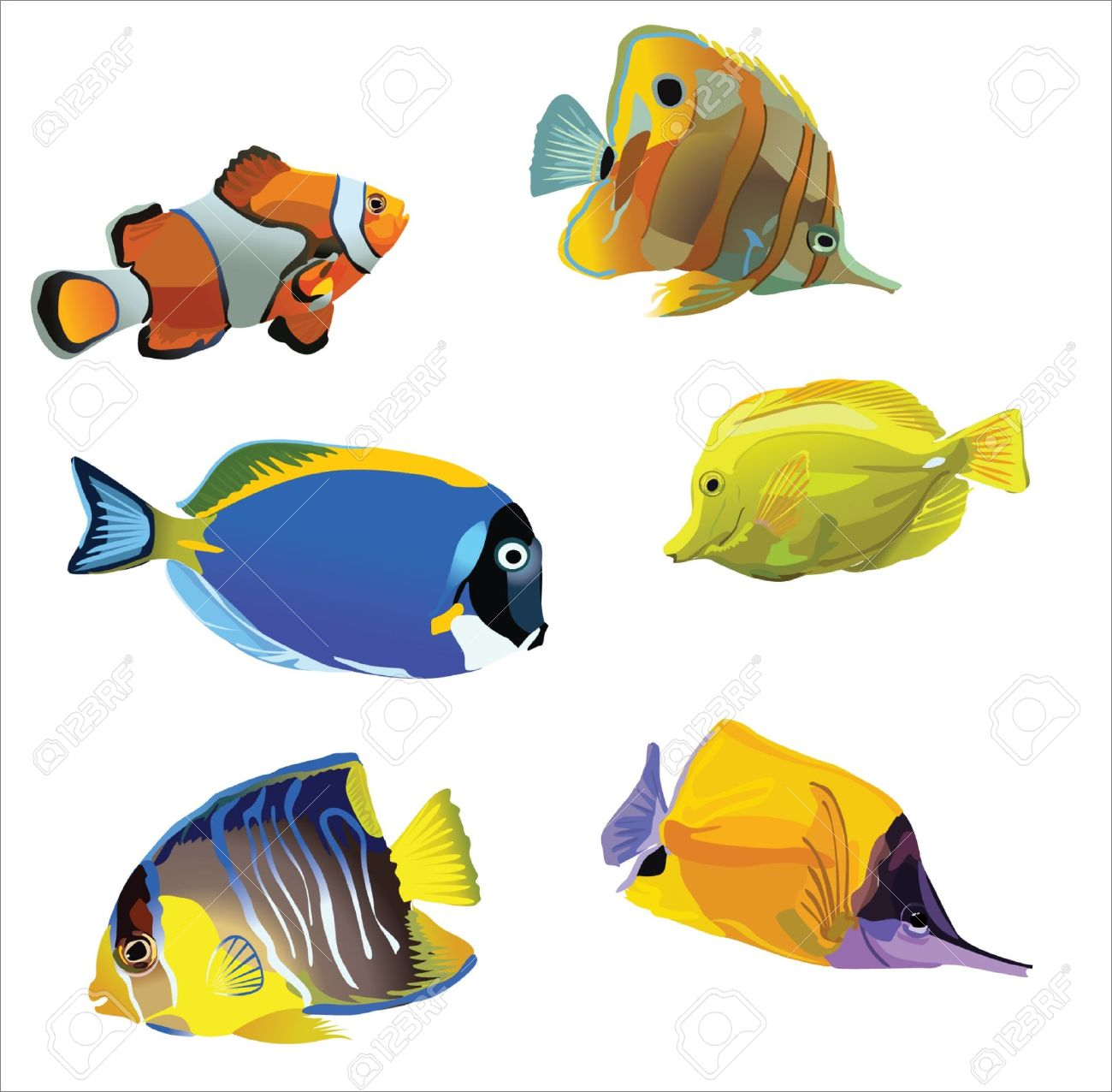 Aquarium Fish Royalty Free Cliparts Vectors And Stock Illustration
