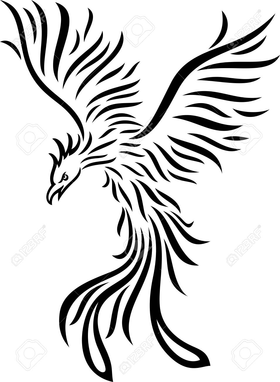 Phoenix Tattoo Isolated On White Background Stock Photo Picture And
