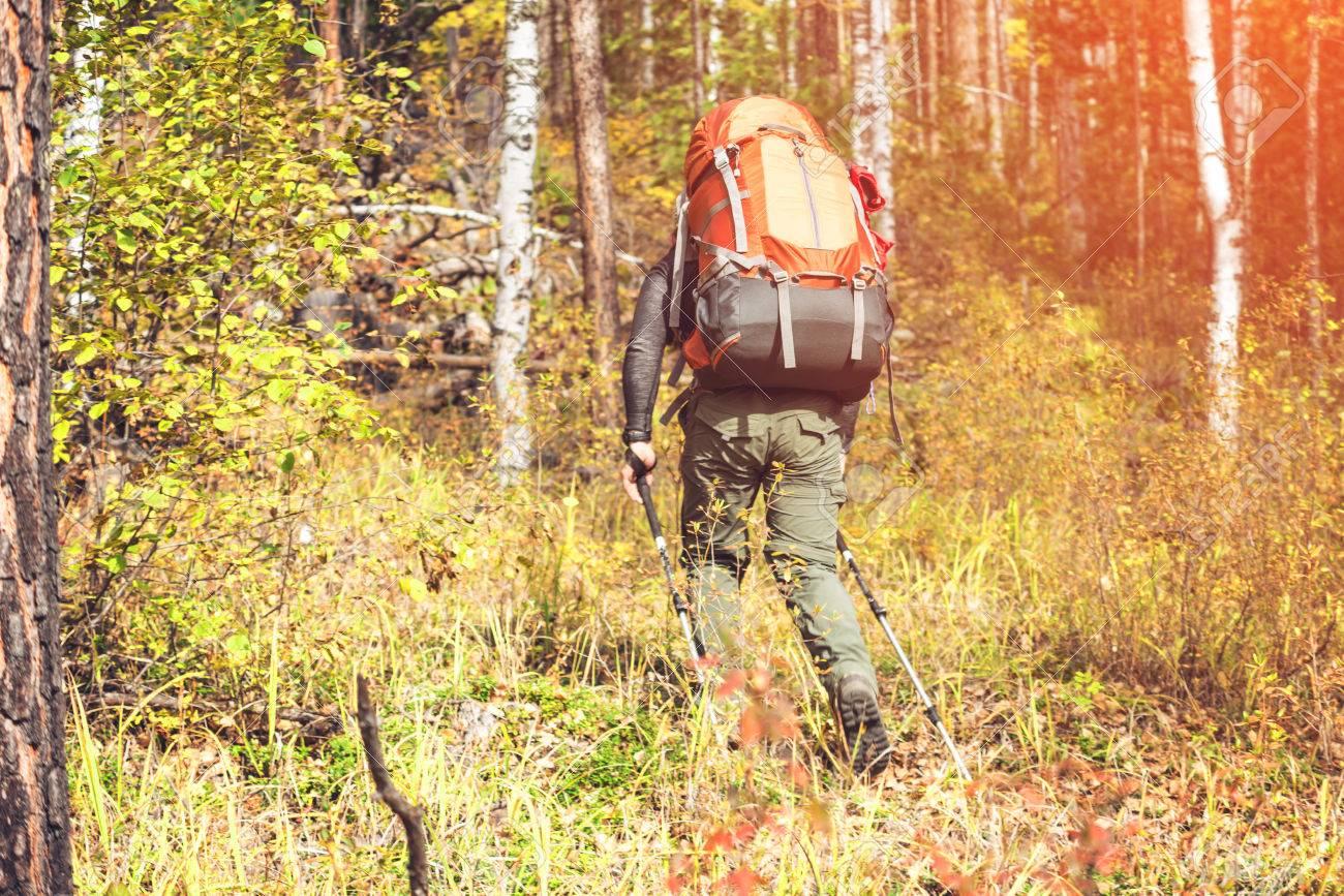 MontagneConcept Un La Forêt Chemin Homme Le Avec Tourisme Remontant À De Écologique Sac Actif Dos sdxorQBthC