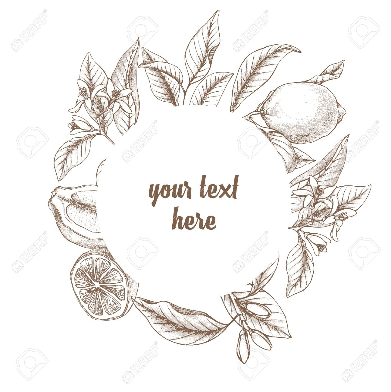 Vintage Botanical Lemon Round Frame Background Hand Drawn Outline