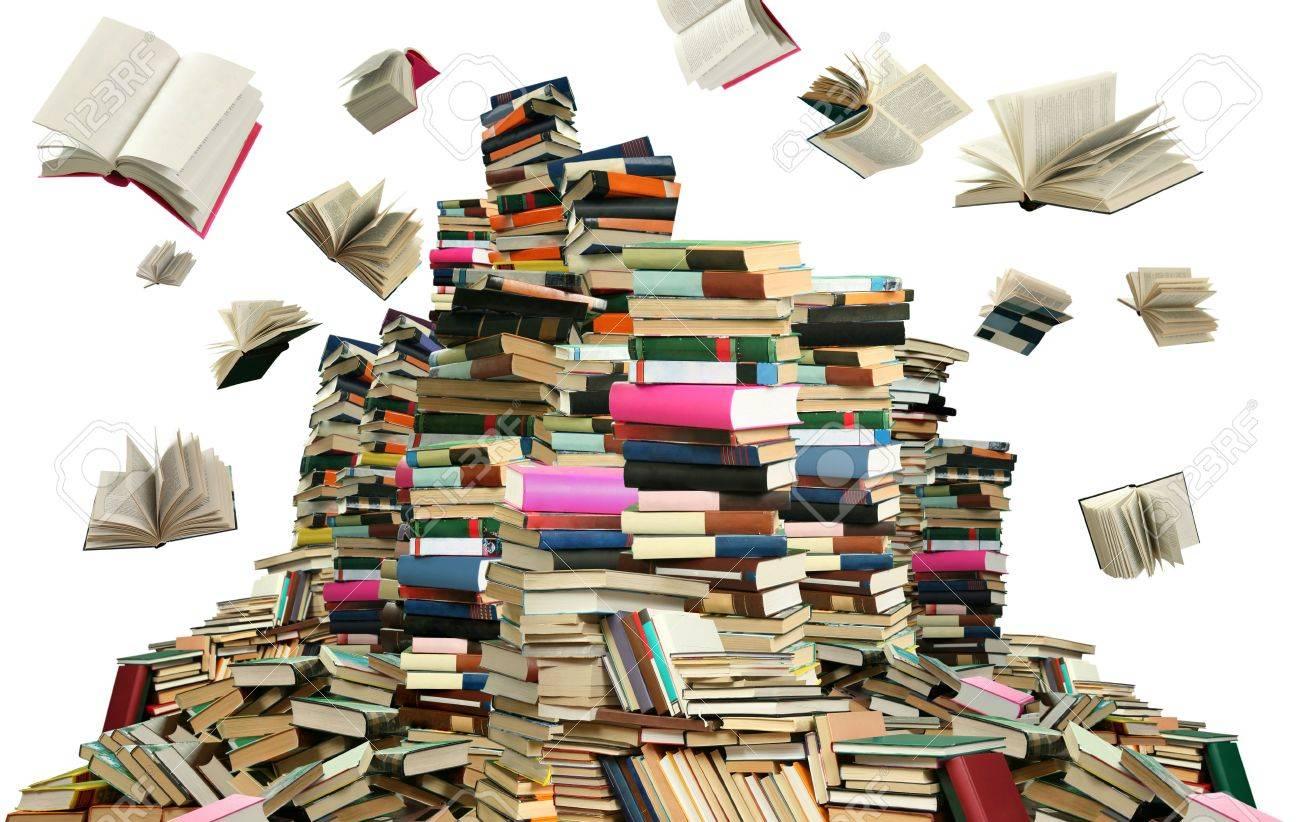 Resultado de imagen para libros muchos libros