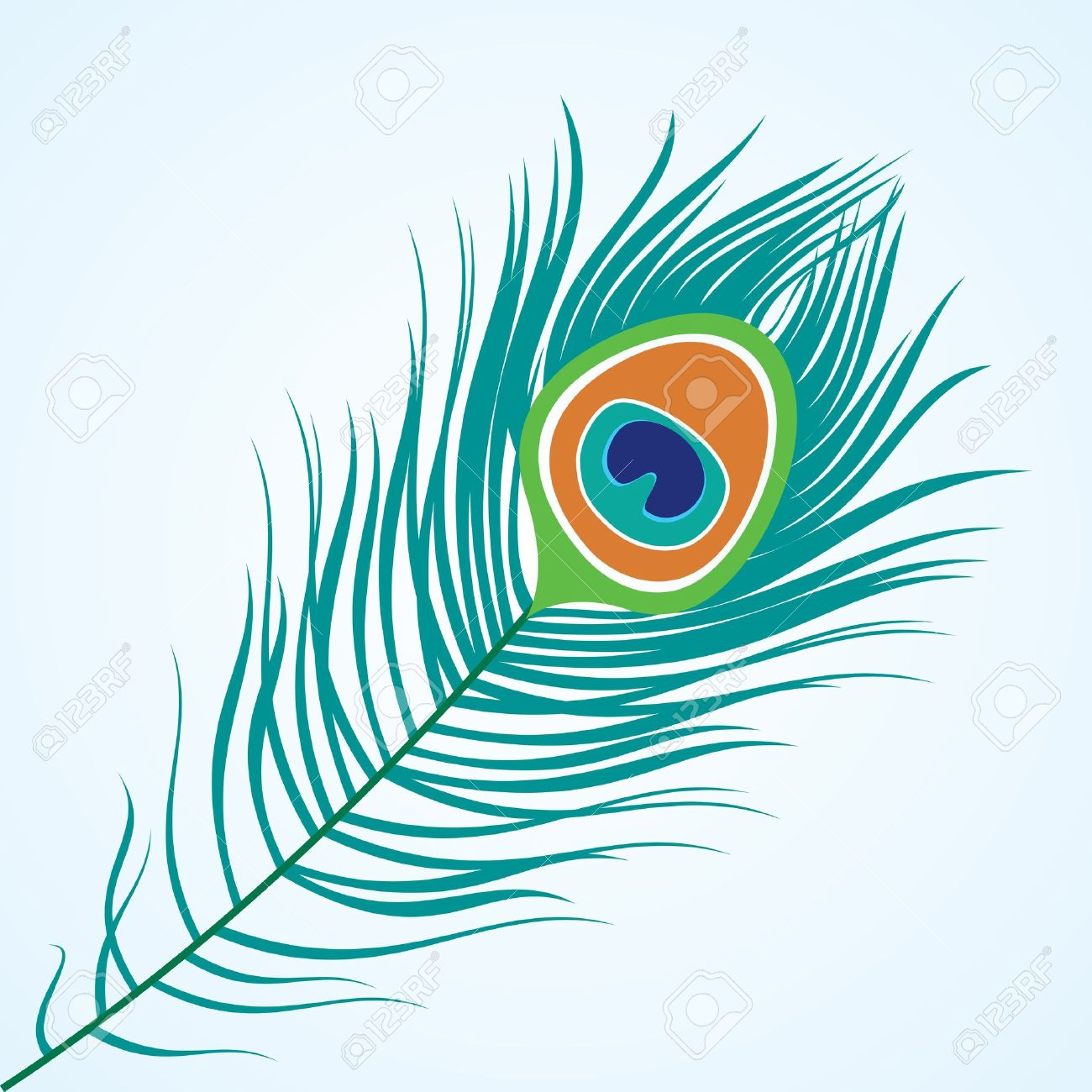 peacock images u0026 stock pictures royalty free peacock photos and