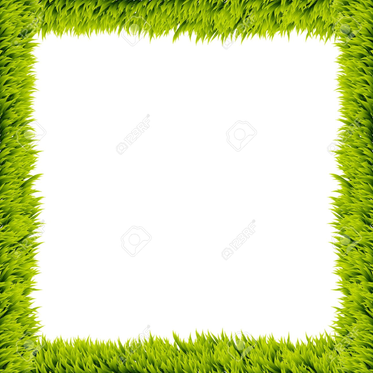 Fresh green grass frame on white background Stock Photo - 15281753