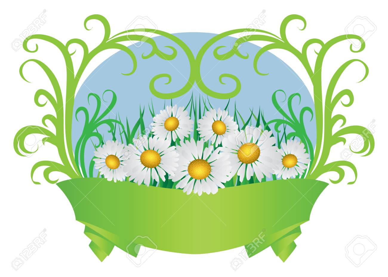 Summer floral card with daisies and green ribbon. Stock Vector - 18632343