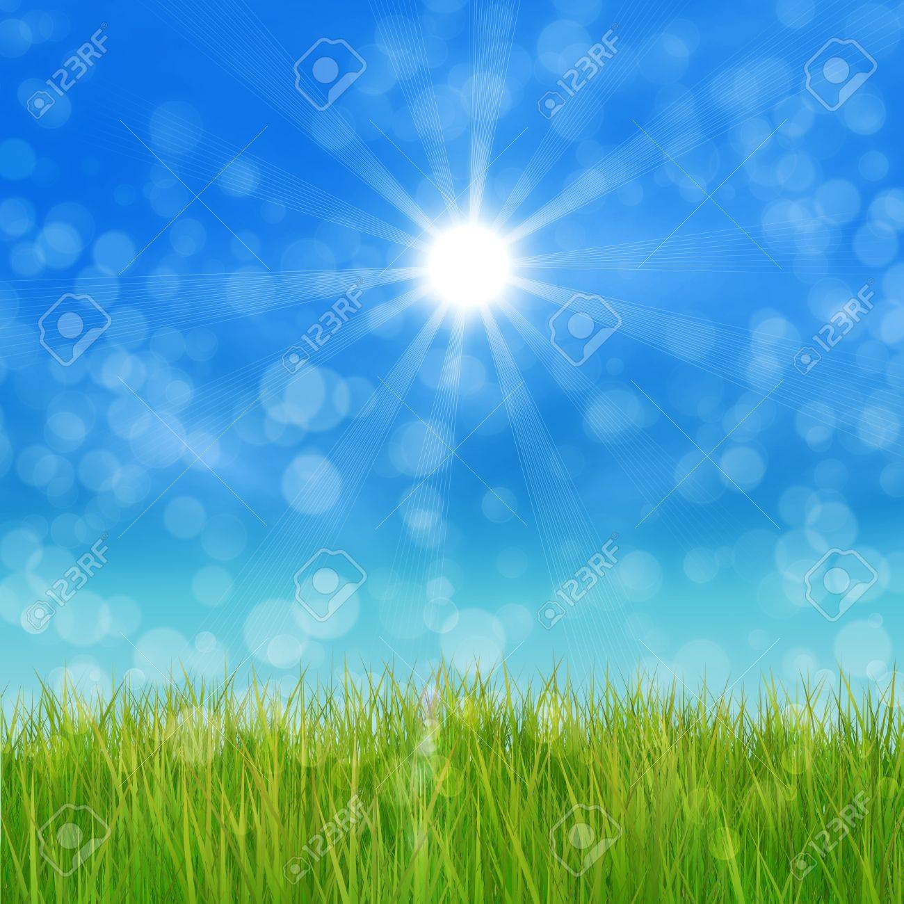 Summer nature background with 3d green grass and blue sky. Stock Photo - 18727718