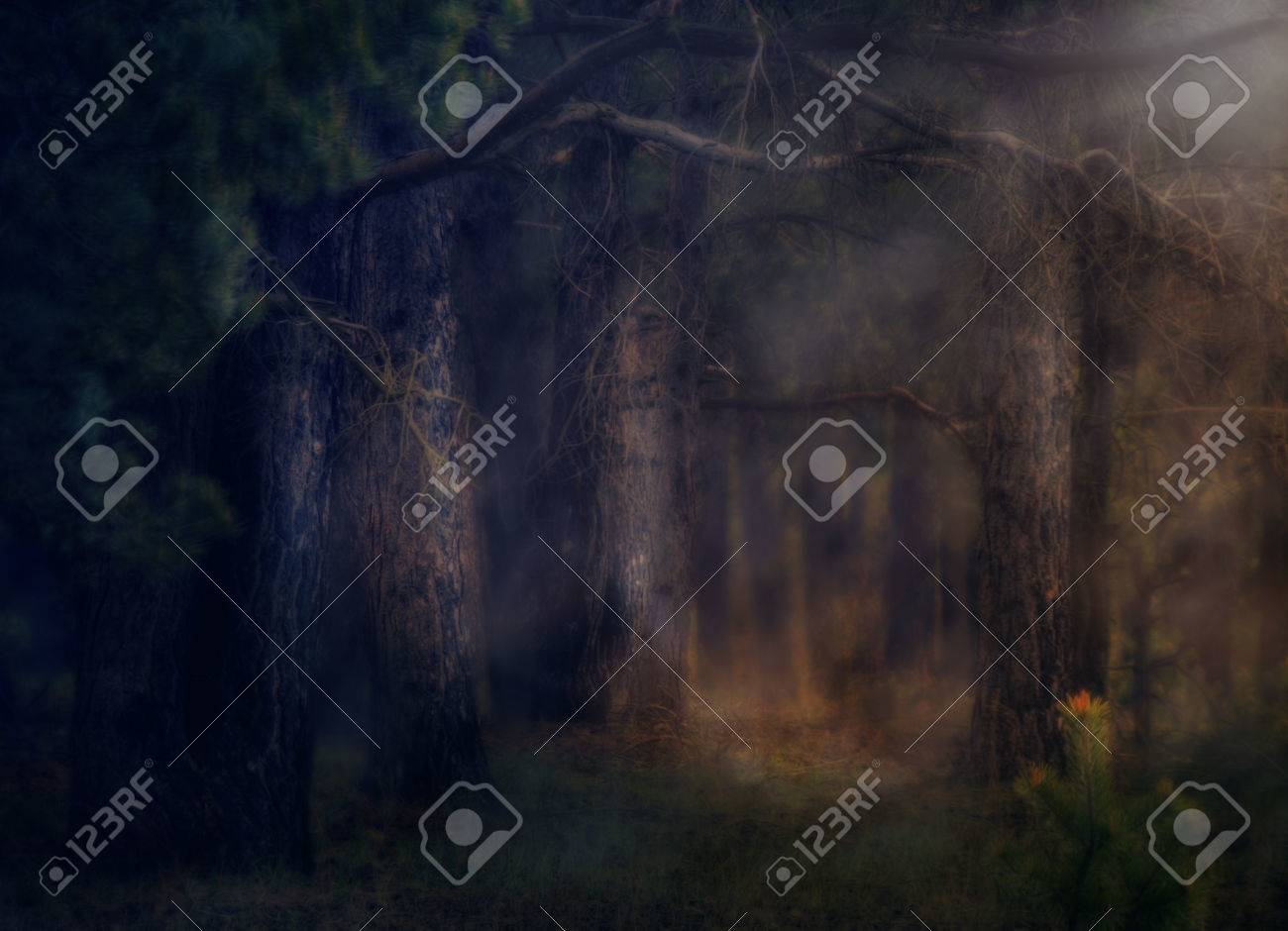 dark deep magical forest with fog halloween background stock photo 40117098