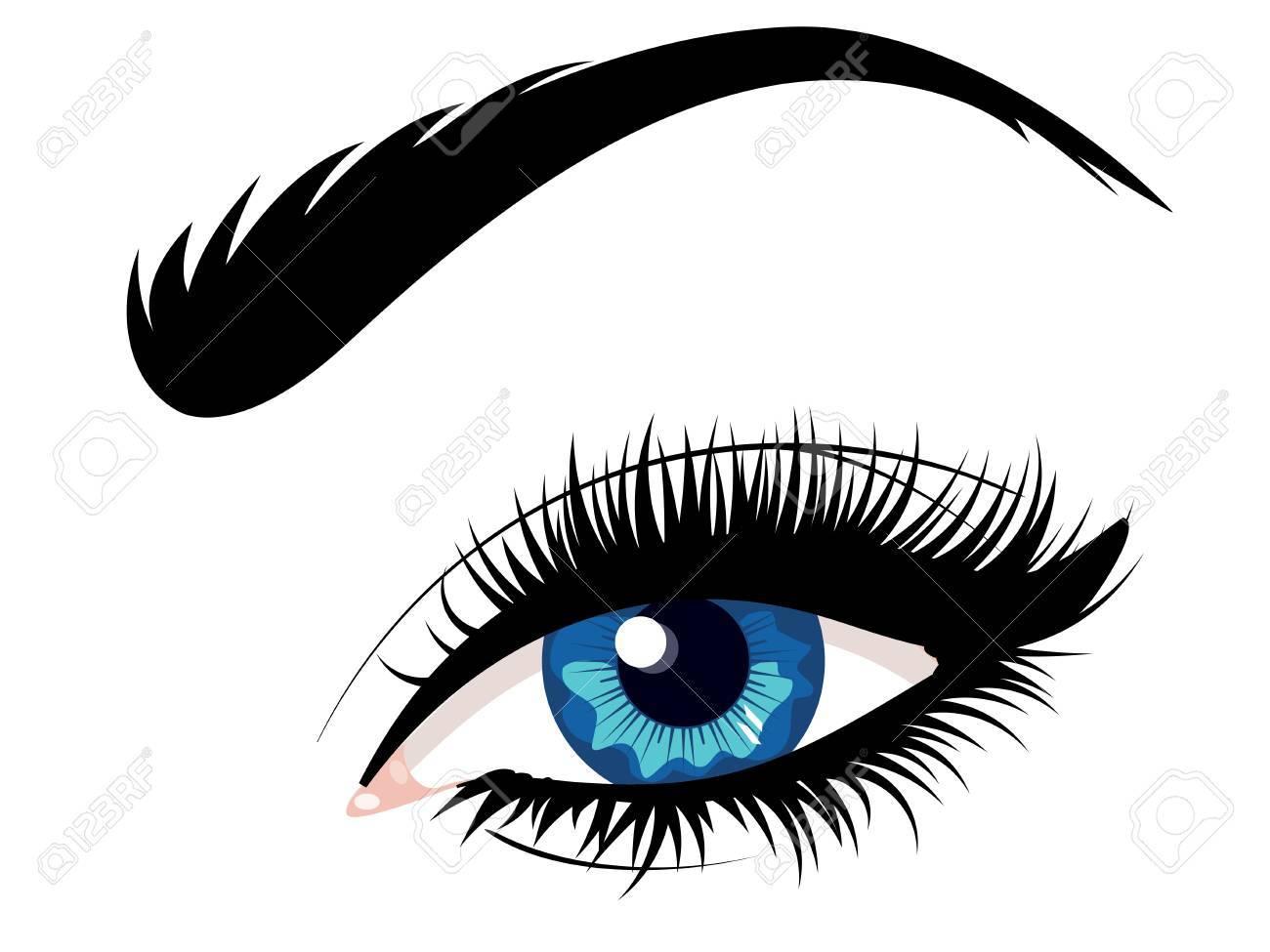 Cartoon female eye of blue color with eyebrow illustration stock vector 72414614