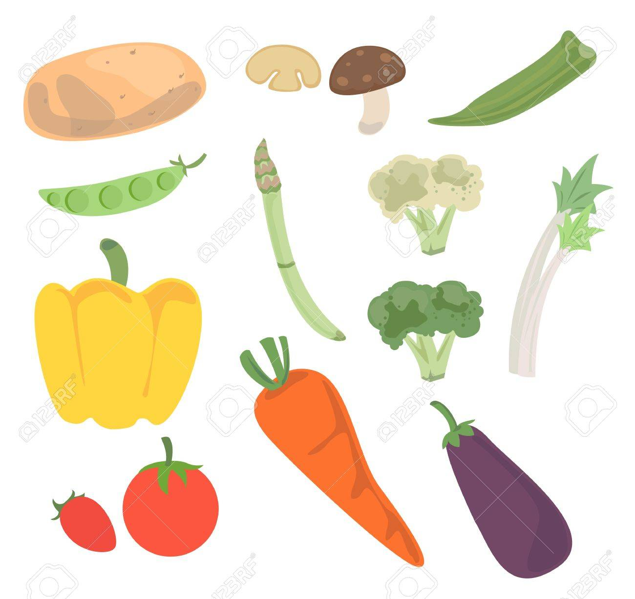 Fresh vegetables for cooking and good for health. - 21493451