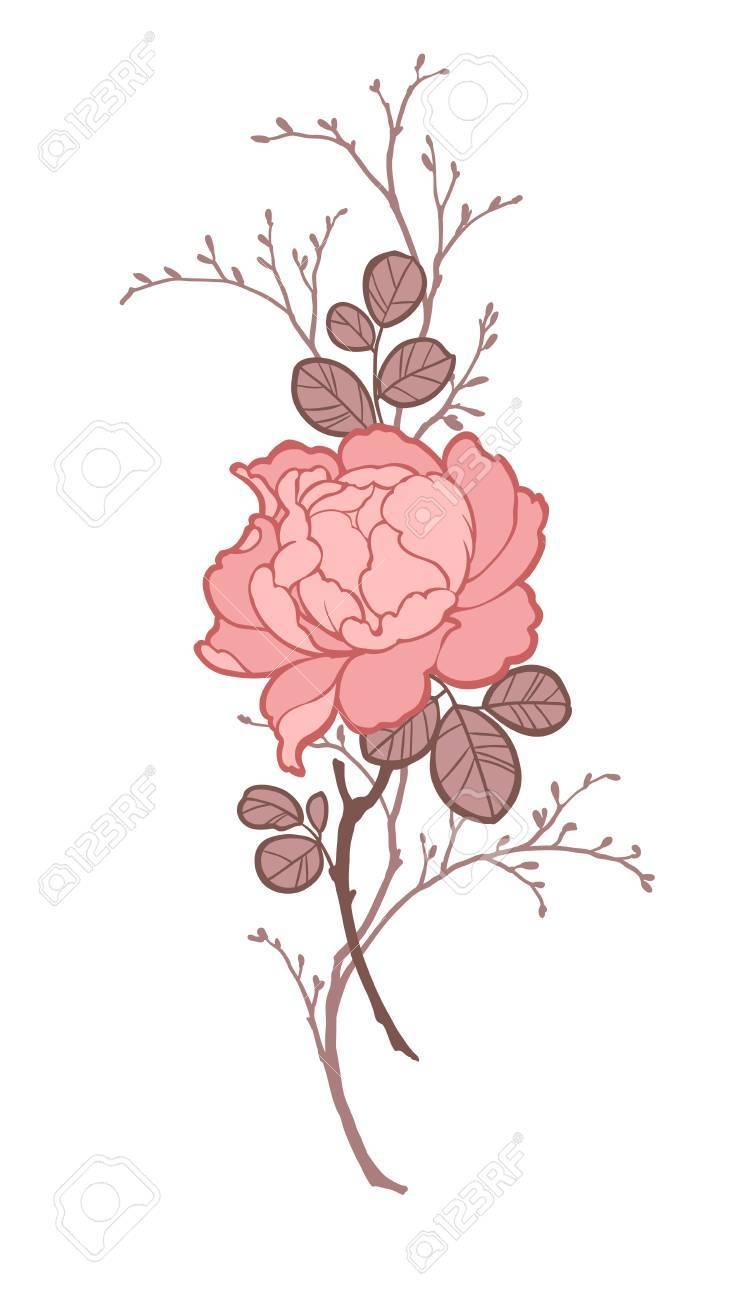 Fleur De Pivoine Rose Avec Des Branches Pour Décorer Illustration Dans Les Couleurs Rouge Clair Sur Fond Blanc Peut être Utilisé Pour Décorer Des