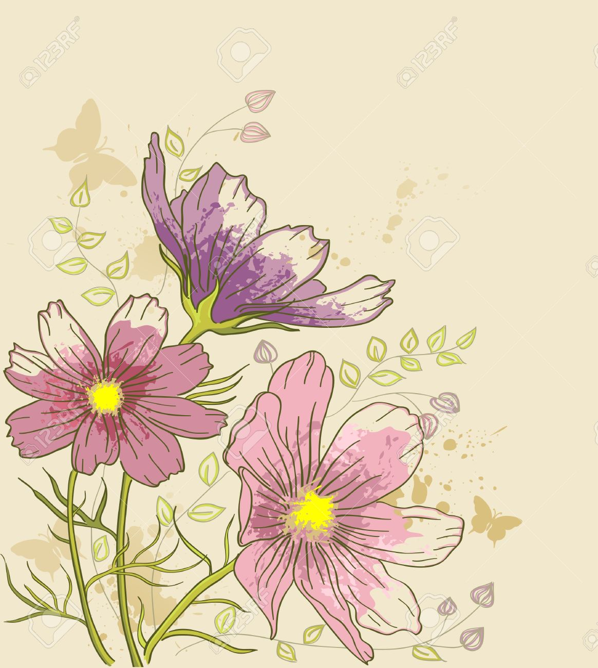 vintage vector floral background with cosmos flowers Stock Vector - 9699070