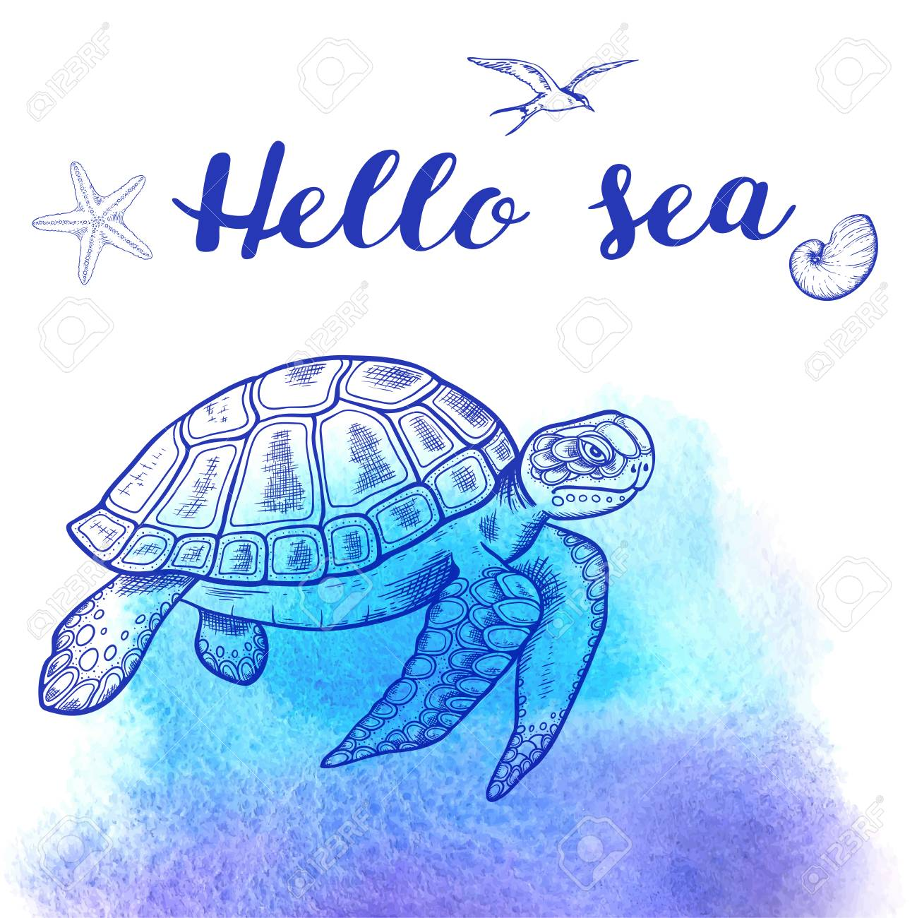 Vector Hand Drawn Sea Turtle On A Blue Watercolor Background Royalty Free Cliparts Vectors And Stock Illustration Image 78540733
