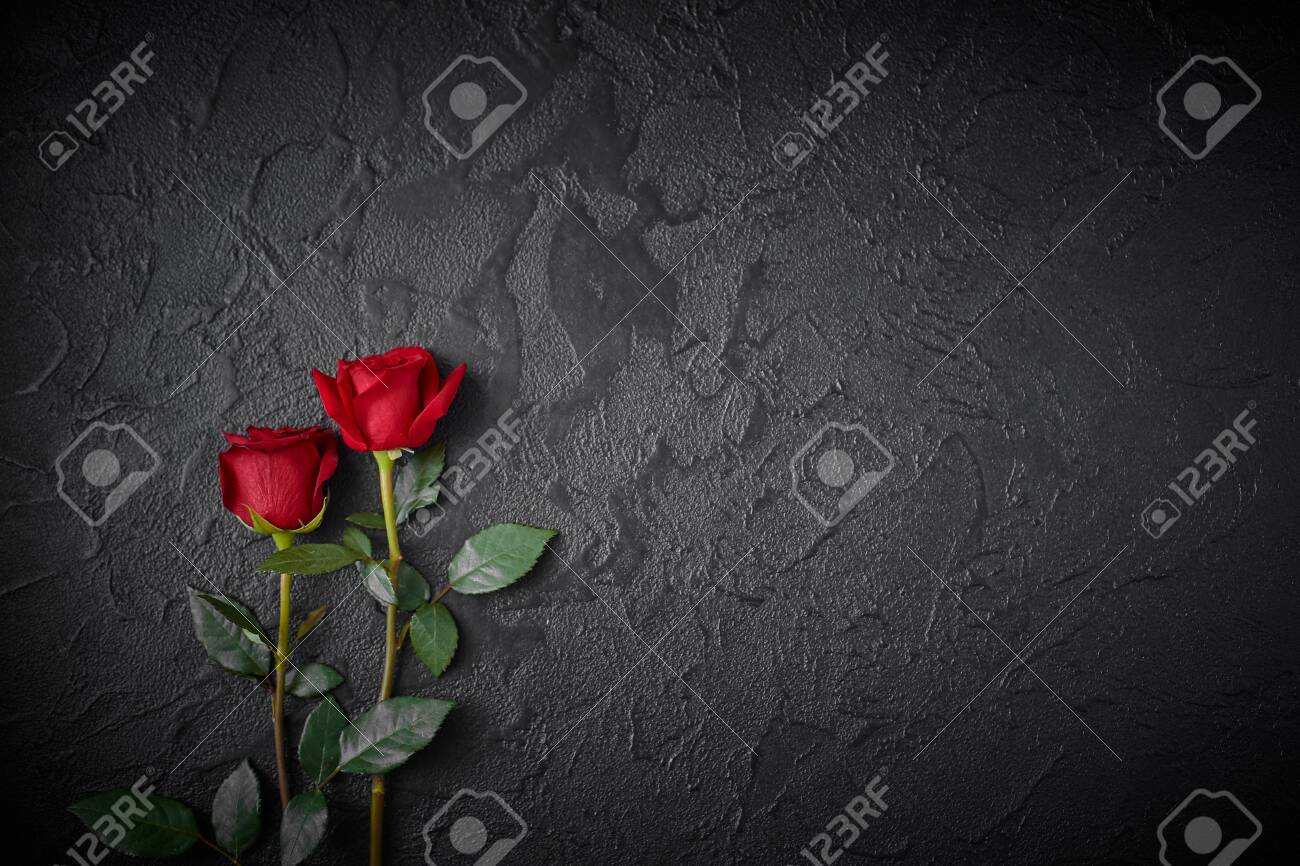 Two red roses on a dark, black textured background. Space for text - 131792035