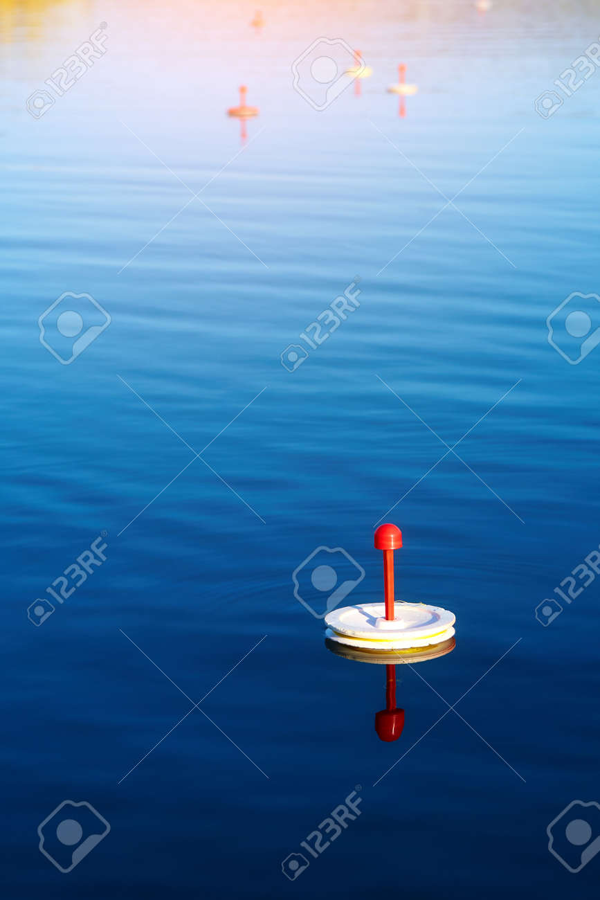 Fishing trap for predatory fish swims on the lake waiting for a bite. - 158618966