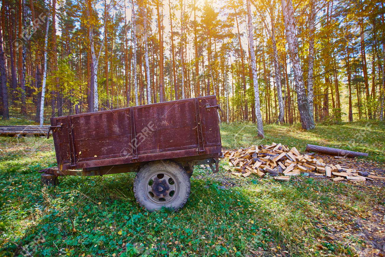 Tractor trailer. An old trailer sits on a green lawn - 158639558