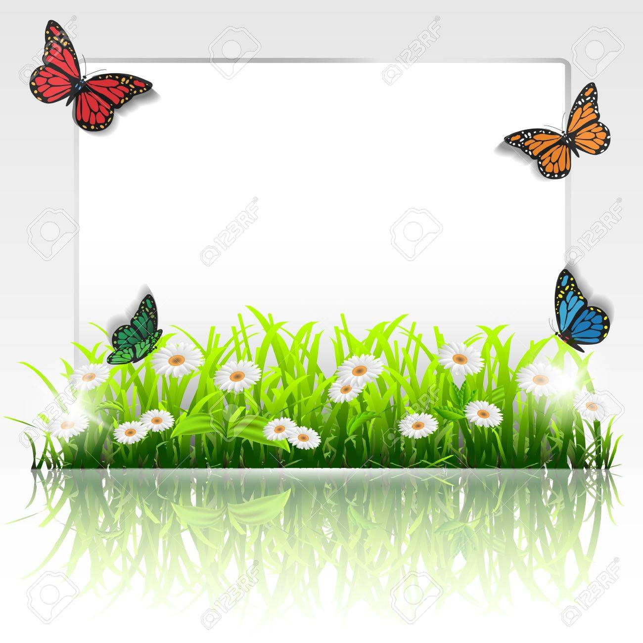 Natural Frame With Grass,chamomiles And Butterflies.Vector Eps ...