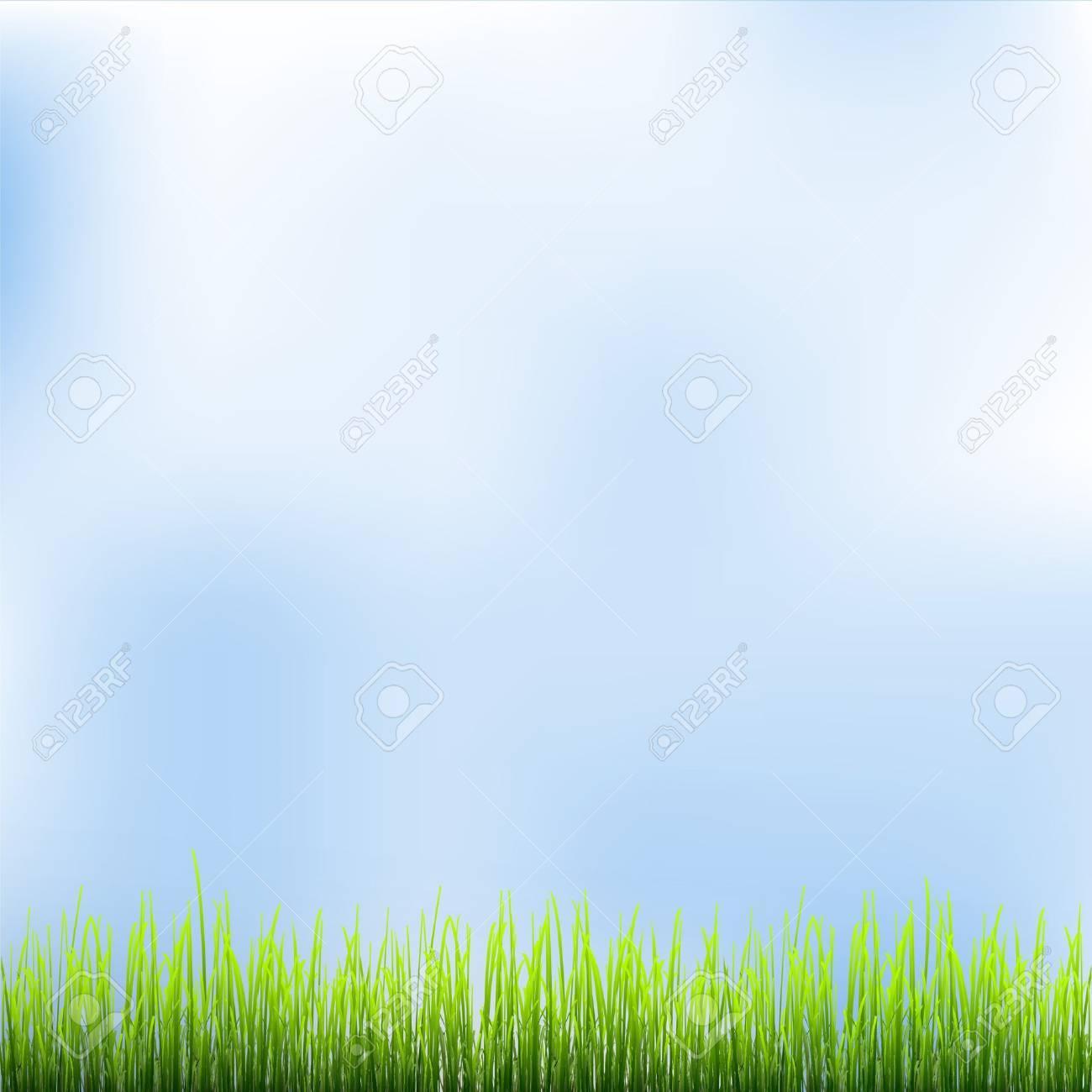 Green grass and blue sky. Vector illustration Stock Vector - 15931378