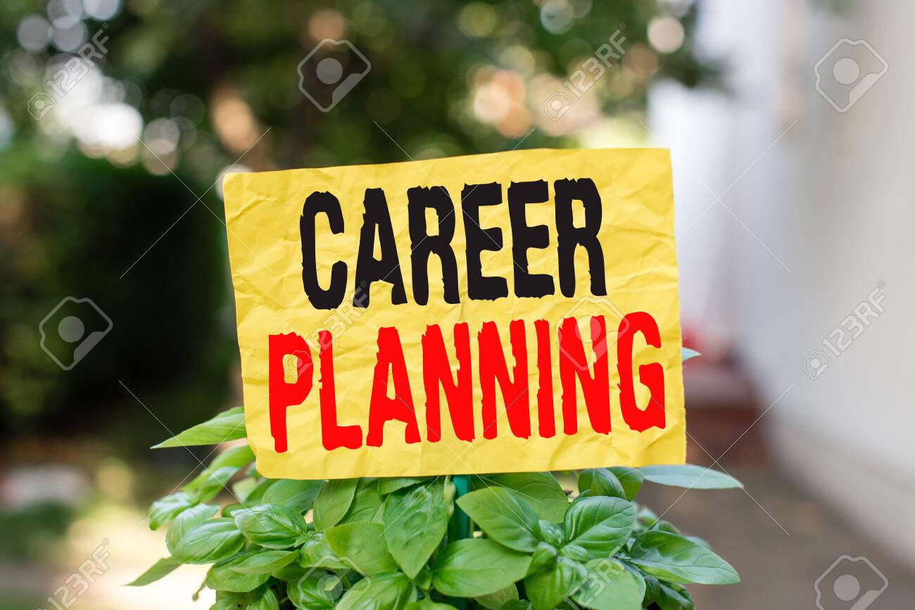 Word writing text Career Planning. Business photo showcasing Strategically plan your career goals and work success Plain empty paper attached to a stick and placed in the green leafy plants - 129853935