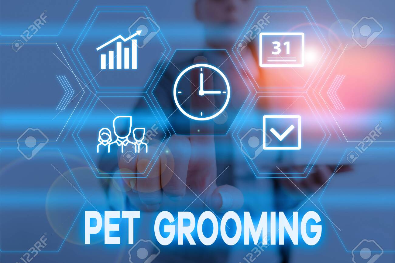 Conceptual Hand Writing Showing Pet Grooming Concept Meaning Stock Photo Picture And Royalty Free Image Image 131451131
