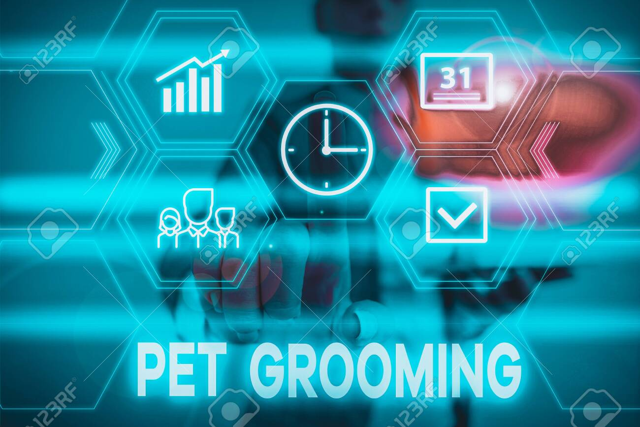 Conceptual Hand Writing Showing Pet Grooming Concept Meaning Stock Photo Picture And Royalty Free Image Image 138108356
