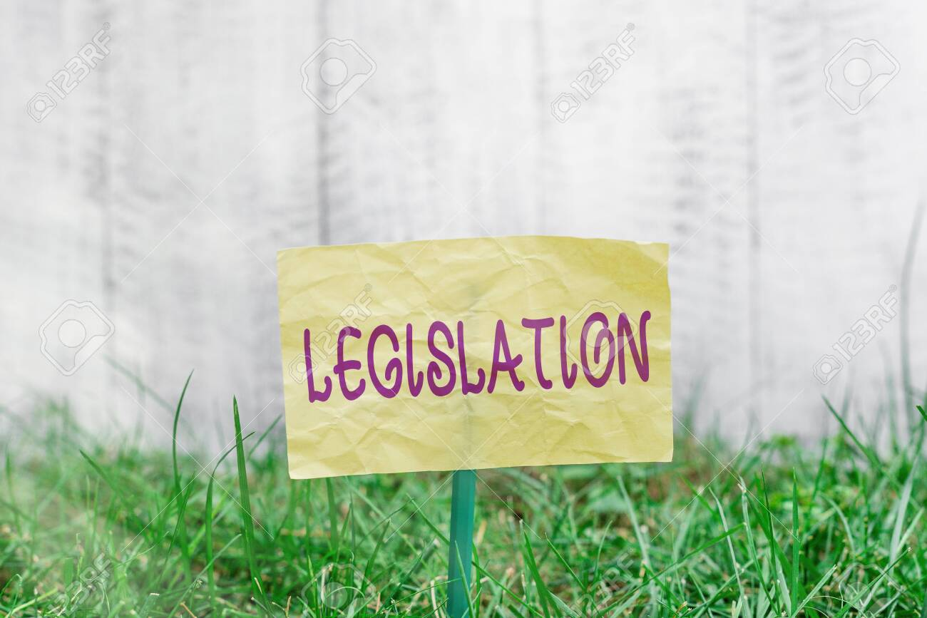 Handwriting text writing Legislation. Conceptual photo the exercise of the power and function of making rules Plain empty paper attached to a stick and placed in the green grassy land - 153413911